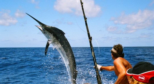A Checklist For Deep Sea Fishing