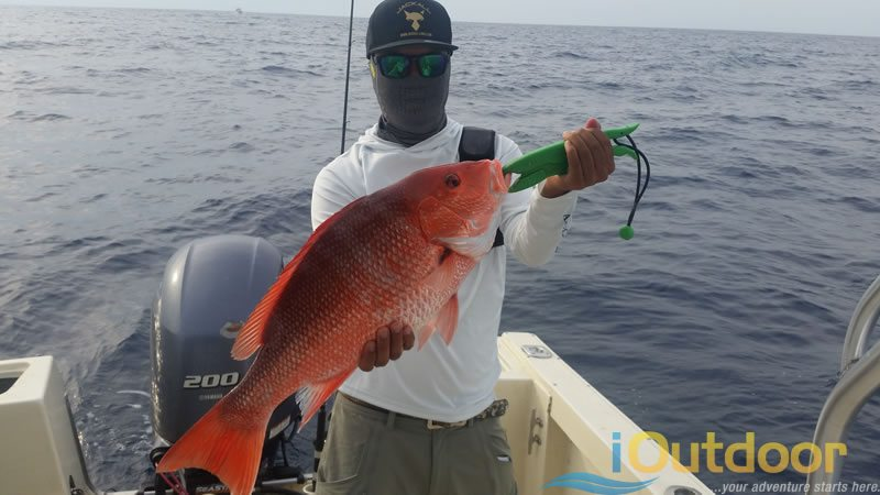 Ponce Inlet Snapper Fishing