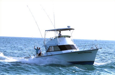 Boat Charters