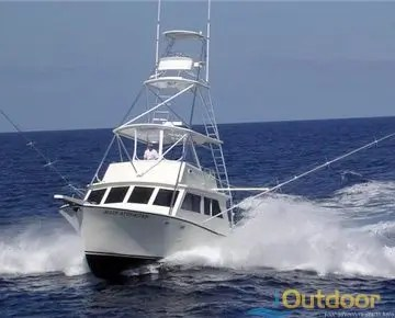 Boat charters st petersburg ioutdoor fishing adventure for Deep sea fishing new smyrna beach