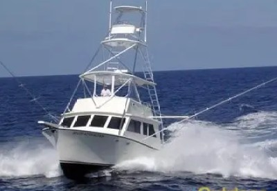 Florida Offshore Fishing - Florida Deep Sea Fishing