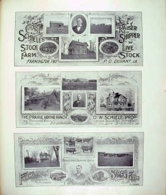 Charles L. Schiele's stock farm
