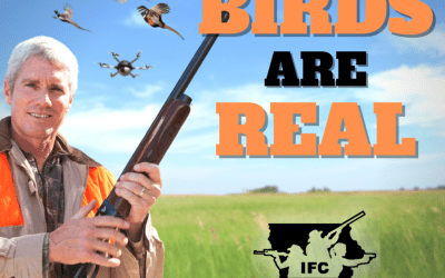 Birds ARE Real.  Probably….