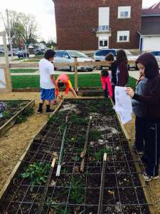St. Joe's 3rd and 4th grade students learning about perimeter by measuring our raised garden beds.
