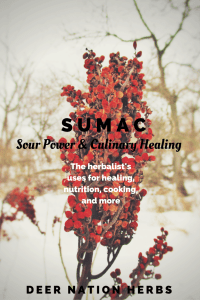 Sumac is an incredible healing herb, but has also long had a place in the culinary arts. Learn about the health benefits, flavors, uses, and preparations possible with sumac.