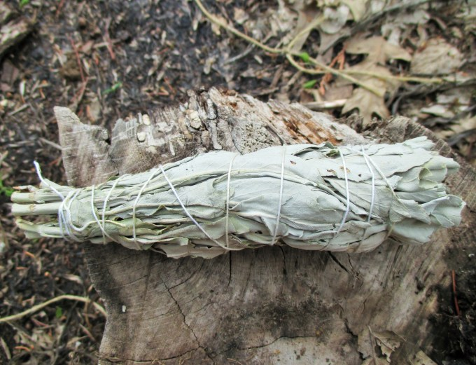 White Sage Incense | Iowa Herbalist