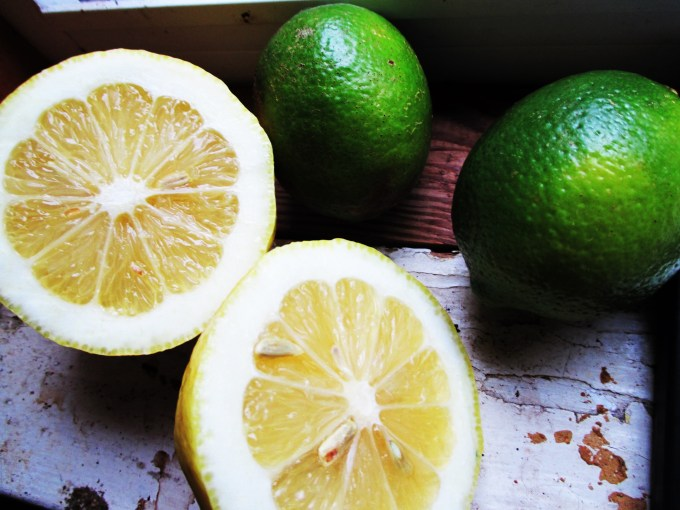 Citrus Lemon Lime Herbalism | Iowa Herbalist