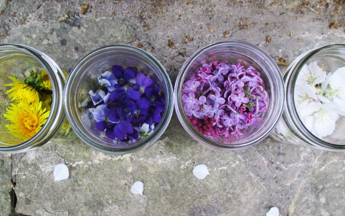 Above View Jars with Flowers | Deer Nation Herbs