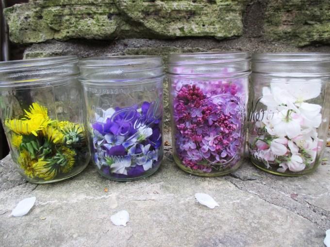 Picked Flowers in Jar | Deer Nation Herbs