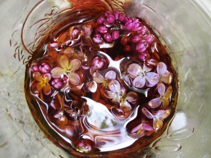Honeyed Lilac Flowers | Deer Nation Herbs