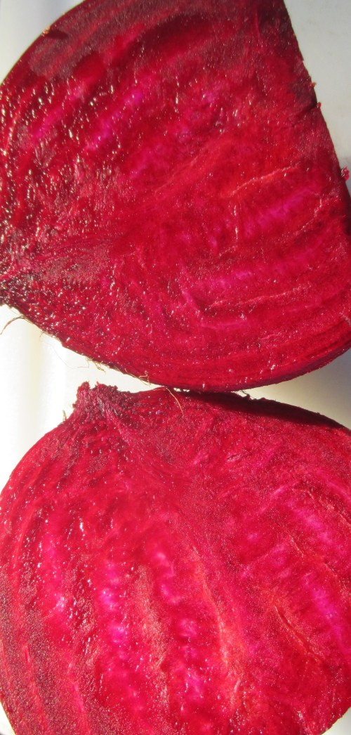 Beet Halves for Making Beet Shrub (For Allergies) | Deer Nation Herbs