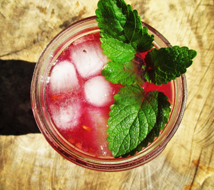 Beet Shrub Mocktail Above | Deer Nation Herbs
