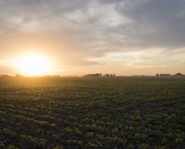 Bremer County Iowa Farmland Values