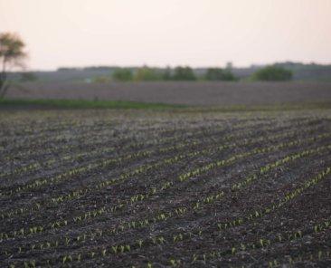 Floyd County Iowa Farmland Values
