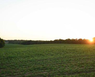 Howard County Iowa Farmland Values