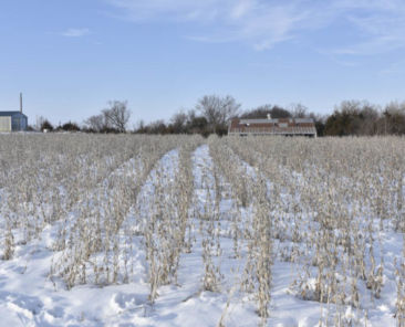 Iowa Land Auction Results