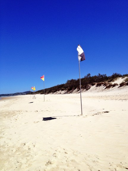 Swimming area flags