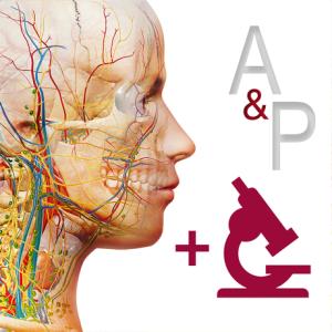 Anatomy 038 Physiology iPA Crack