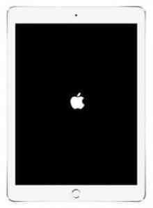 iPad-boot-up-250x341