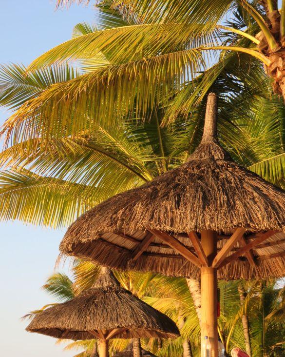 Mauritius, where dreams come true