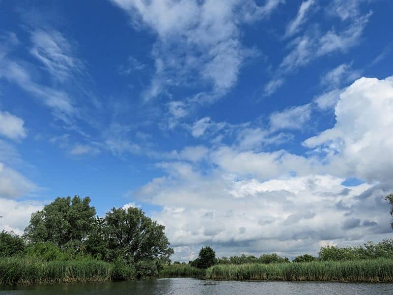 De Biesbosch, the Netherlands, wetland, natural reserve, national park De Biesbosch