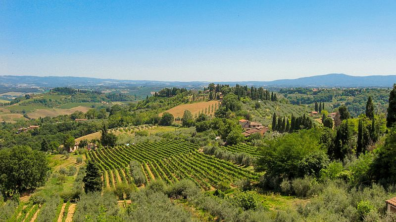 hills with wine yards and cypresses and some houses, Tuscany
