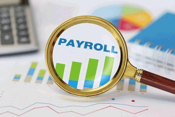 Payroll-under-spotlight