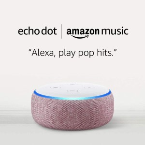 Buy 2 Echo Dots For $39.98 At Amazon!