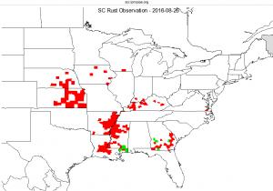 Wisconsin Corn Southern Rust Update