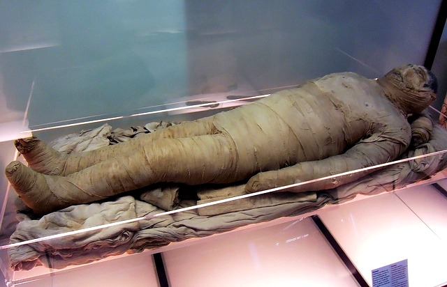Mummies – The Facts!   Fun Facts You Need to Know!