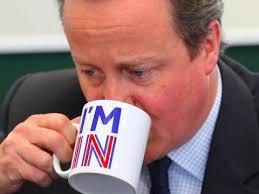 brexit mug 3