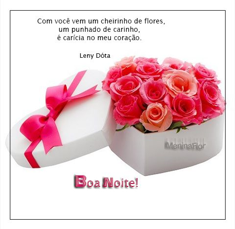 Mensagem de boa noite com flores