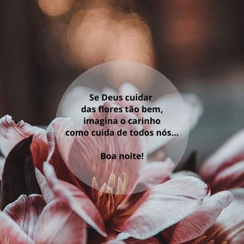 Mensagem de boa noite maravilhosas com flores