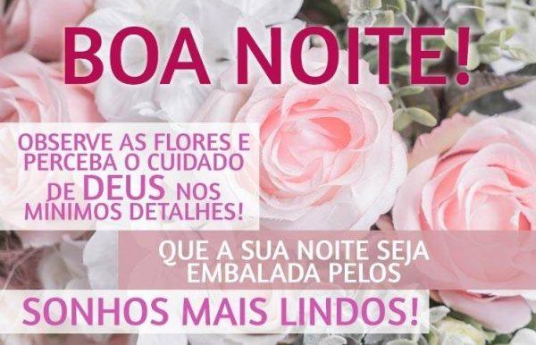 Mensagem de boa noite com belas flores