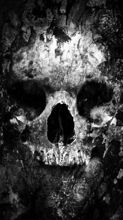 Cell Wallpaper Hd Illustration Fall Papers Co Au44 Skull Face Ark Paint Illustration Art Bw