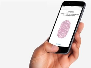 iOS 11 Problems - Touch ID Not Working