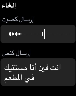 apple-watch-arabic-4