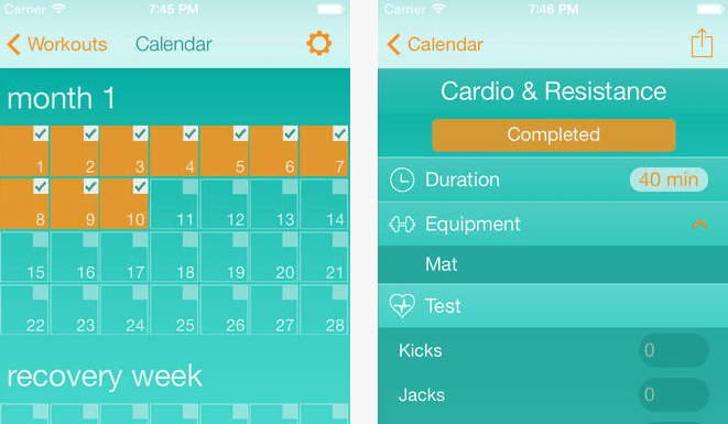 4 iOS Apps for Insanity Workout - iPhoneNess