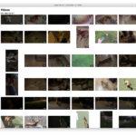 Lista de vídeos sin info en la App de Fotos