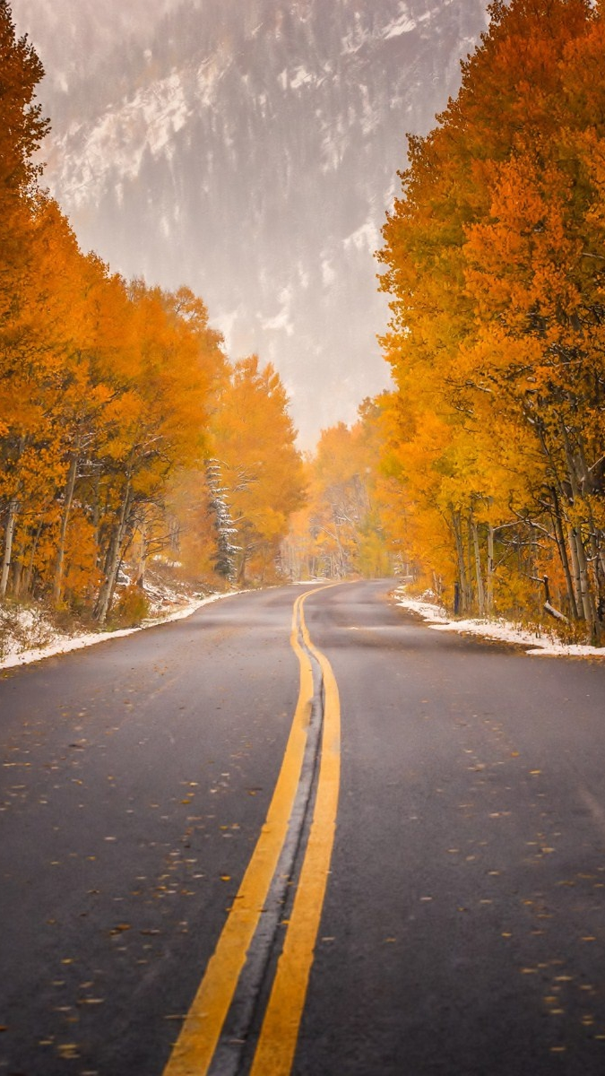 Iphone 6 Wallpaper Fall Leaves Road Highway Autumn Trees Foliage Forest Mountain Iphone