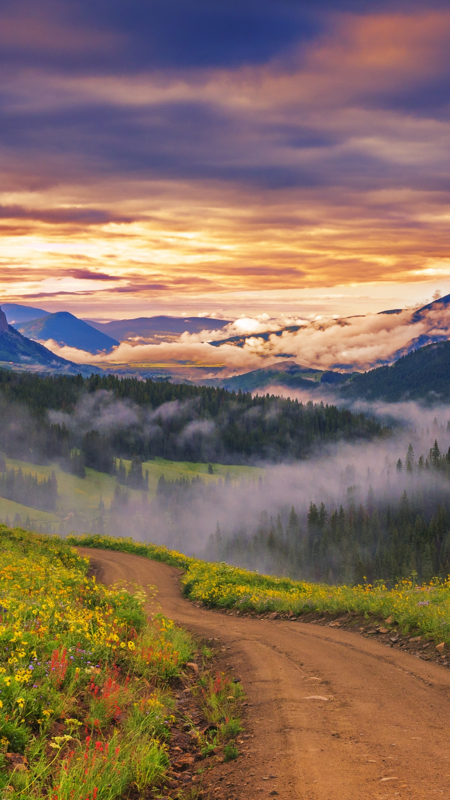 Fall Flowers Desktop Wallpaper Sky Meadow Flowers Sunset Mountains Nature Landscape