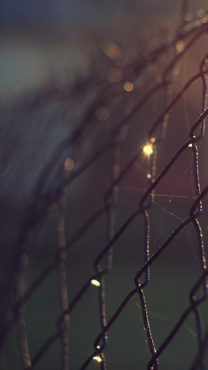 Cute Iphone Christmas Wallpapers Steel Cage Focus Bokeh Wallpaper Iphone Wallpaper Iphone