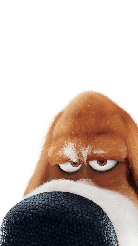 Wallpaper Cute Emojis Snowball Cute Bunny Secret Life Of Pets Iphone Wallpaper