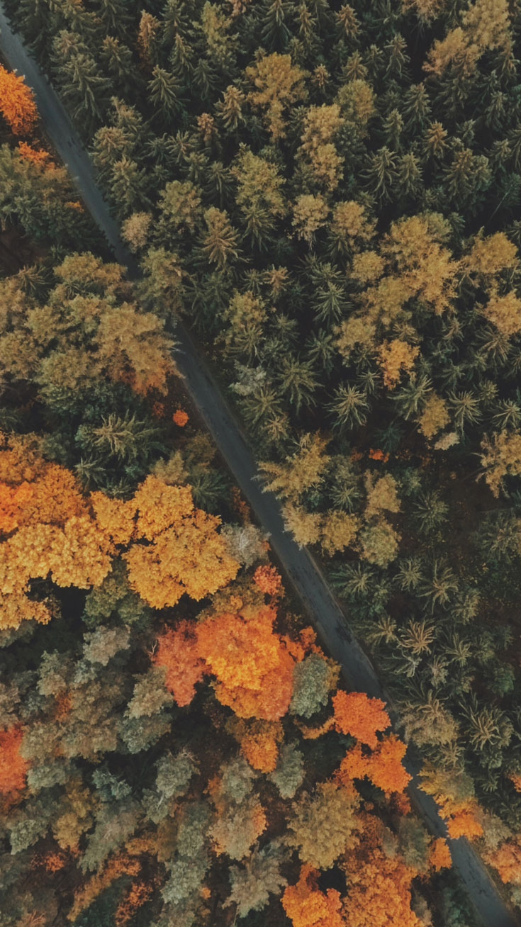 Fall Mountains Hd Wallpaper Pictures Autumn Fall Road Aerial View Iphone Wallpaper Iphone