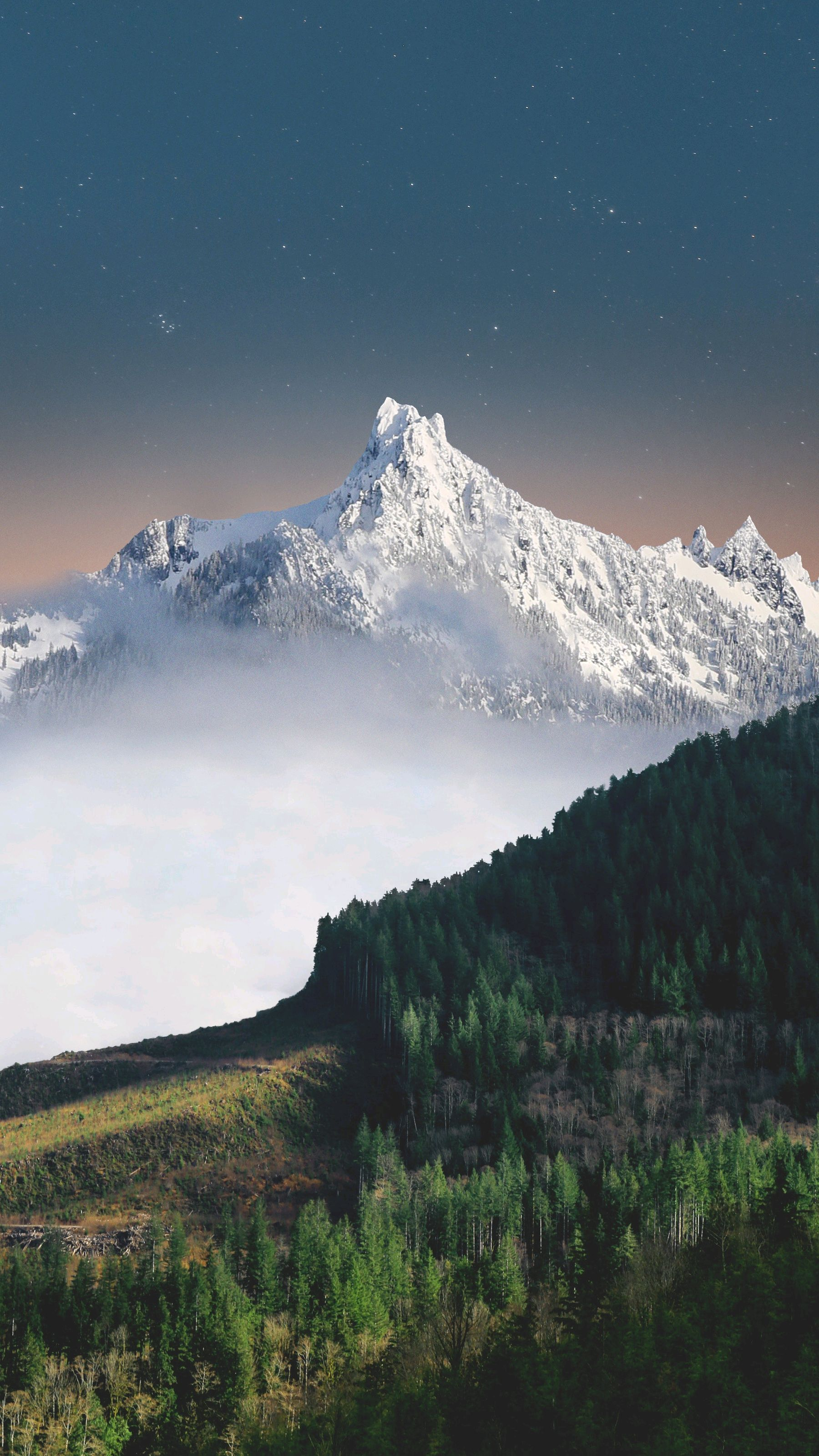 Love Cute Wallpaper Free Download Snow Mountains Green Forest Nature Scenery Iphone