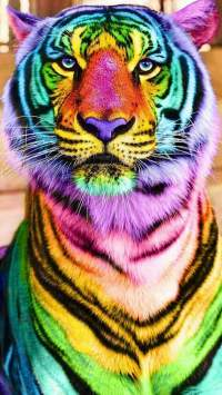 Colorful Tiger iPhone Wallpaper - iPhone Wallpapers