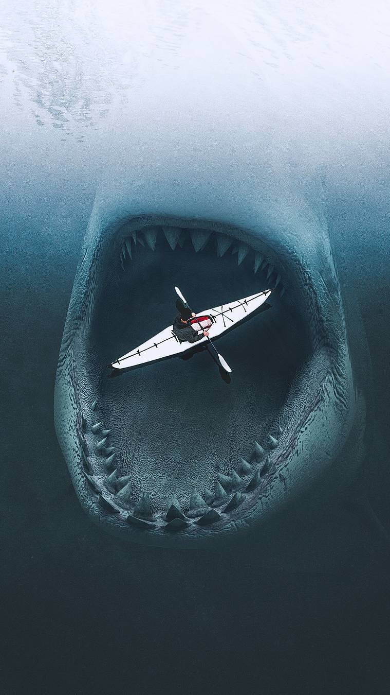 Cute Wallpapers Quotes For Girls Megalodon Shark Iphone Wallpaper Iphone Wallpapers