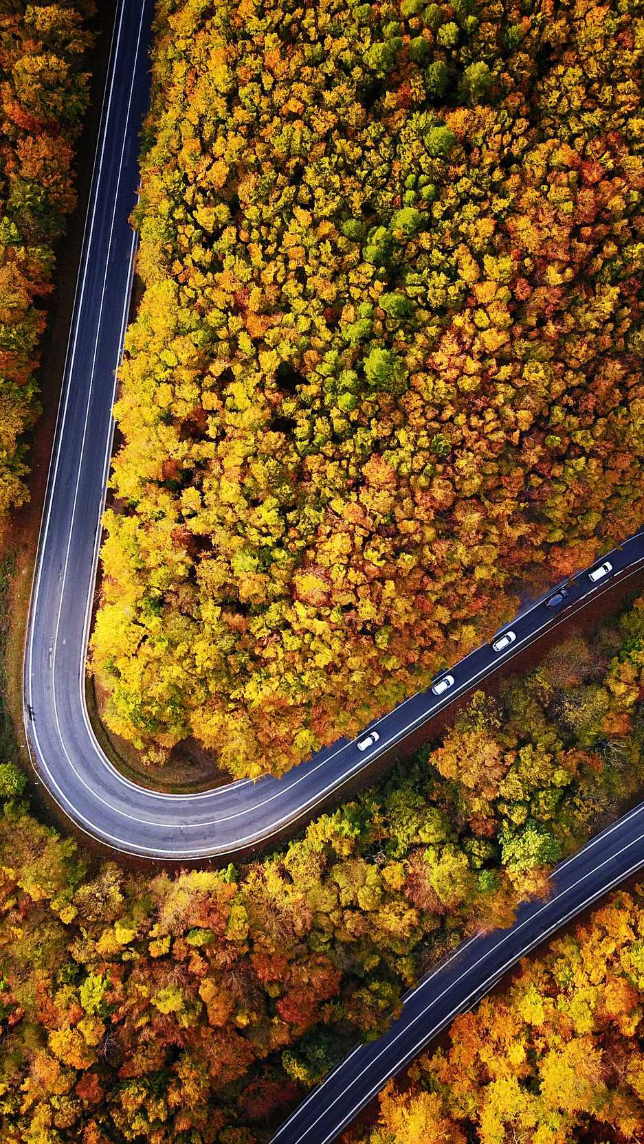Cute Halloween Wallpaper Phone Twisted Road Autumn Sky View Iphone Wallpaper Iphone