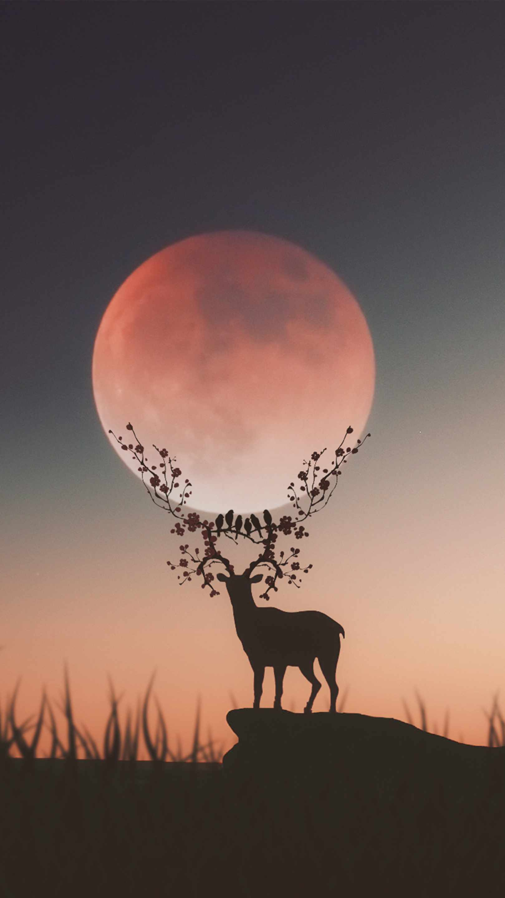 Cute Dog Wallpapers With Quotes Deer Silhouette Moon Iphone Wallpaper Iphone Wallpapers