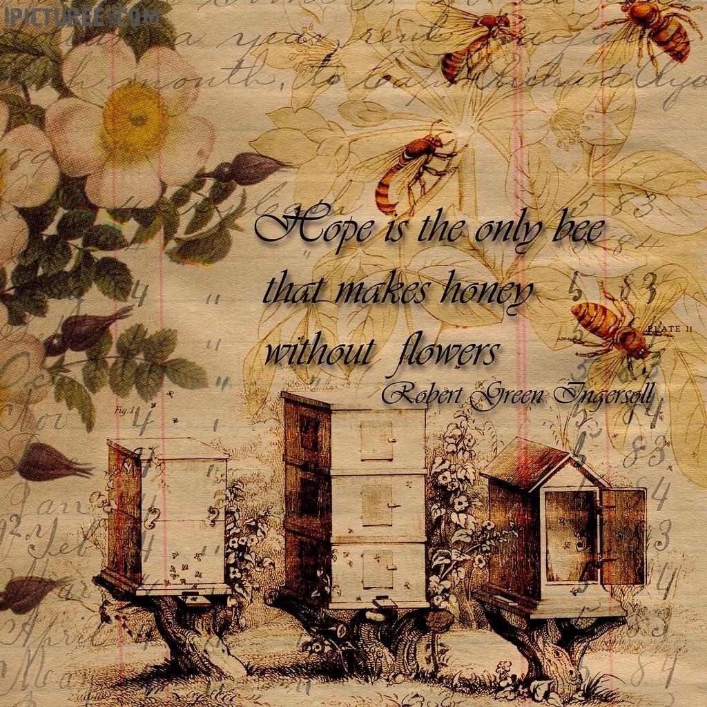 Cute Wallpapers Of Roses Vintage Honey Hives Art Wallpaper